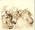 Print, drawing book (BM 1866,1110.1095).jpg