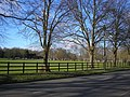 Prospect Park, Reading - geograph.org.uk - 673029.jpg