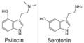 Psilocin and serotonin2.png
