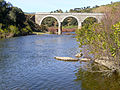 Puente 2013-2-03 RMontoro SierraMadrona.jpg