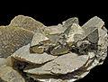 Pyrite, sidérite 1.JPG