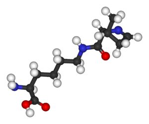 Pyrrolysine - Image: Pyrrolysine 3D balls