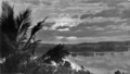 Queensland State Archives 860 Sunrise Johnstone River Innisfail North Queensland c 1927.png
