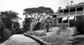Queensland State Archives 87 The Drive Government House Fernberg Road Paddington Brisbane c 1930.png