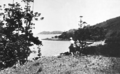 Queensland State Archives 989 From the heights of Lindeman Island Seaforth Island in distance c 1931.png