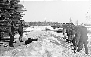 Battle of Varkaus - The execution of two Varkaus Reds