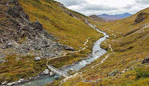 Savage River, Denali National Park‎, Alaska, United States.