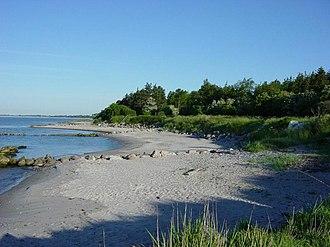 Råbylille Strand - Råbylille Strand - The beach