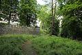 Radeberg Gelbkehain7.jpg
