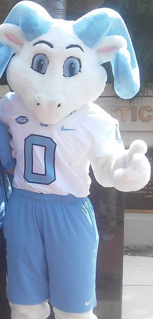 Rameses (mascot) - Rameses Jr. at a football game