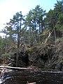 Raymondskill Falls - Pennsylvania (5677471905).jpg