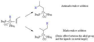 Hydroformylation - Migatory insertion step for propylene for a cobalt carbonyl bis-tributyl phosphine complex