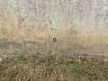 Repère nivellement J'.D.M3N3 - 1 Montée Abîmes Crottet 1.jpg