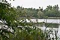 Rheinland-Pfalz, Ludwigshafen am Rhein, Landschaftsschutzgebiet 07-LSG-7314-013, Jägerweiher 004.jpg