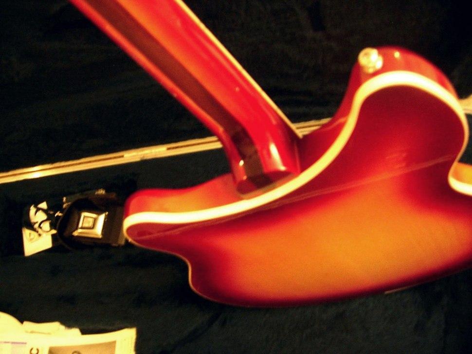Rickenbacker neck