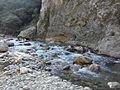 Rijeka Sutjeska.jpg
