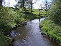 River Avon - geograph.org.uk - 184195.jpg