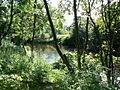 River Carron - geograph.org.uk - 202406.jpg