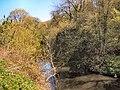 River Darwen - geograph.org.uk - 164494.jpg