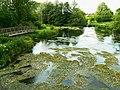 River Kennet at Eddington - geograph.org.uk - 1353822.jpg