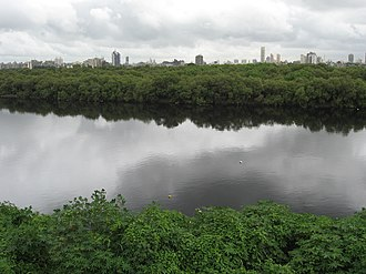 Tulsi Lake - Flood flow from the three lakes outfall into Mithi River