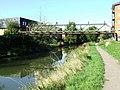 River Stort - geograph.org.uk - 592351.jpg