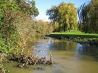 River Stort near Stansted Mountfitchet - geograph.org.uk - 280961.jpg