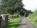 Road at Baylet - geograph.org.uk - 967522.jpg
