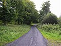 Road at Faughary - geograph.org.uk - 1494944.jpg