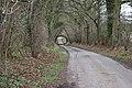 Road passing under railway bridge - geograph.org.uk - 144732.jpg