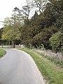Road to Langham Hall - geograph.org.uk - 409665.jpg