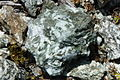Rocks gabbro Northern Apennine 02.JPG
