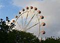 Roda de fira al jardí del Túria de València.JPG