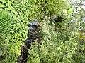Rogge di Lobbi 12 - panoramio.jpg