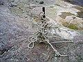 Rope Art (2502779936).jpg