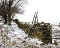 Rotting stile onto Barningham Moor - geograph.org.uk - 1691357.jpg