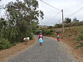 Rui Vaz-Route pavée.jpg