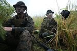 Rumble in the Jungle, 1st Recon Marines train in Hawaii 151121-M-KM305-026.jpg