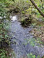 Running into Berrydown Wood - October 2014 - panoramio.jpg