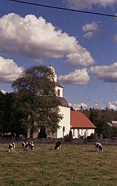 Sällstorps kyrka och kor.jpg