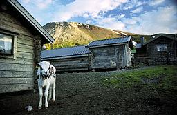 Nyvallens sæterhyttevold med Sonfjället i baggrunden.