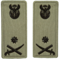 SANDF Rank Insignia Brigadier General embossed badge.png