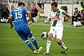 SC Wiener Neustadtvs SK Rapid Wien 20110723 (41).jpg