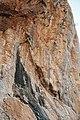 SON08930 Olympos Park Climbing.jpg