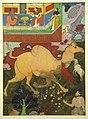 Sage manki see his bullocks with camels.jpg