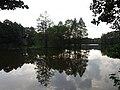 Saliņa Beberbeķu ezerā.jpg