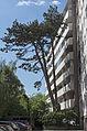 Salzburg-2603.jpg