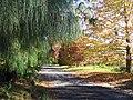 Sam's Way 2 - panoramio.jpg