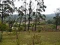 Samaipata, Bolivia - panoramio - vozachudo2004 (4).jpg