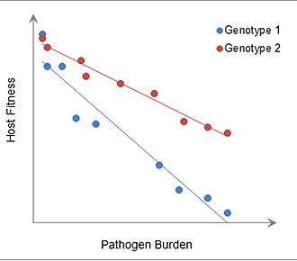 Immune tolerance - Image: Sample reaction norm graphic